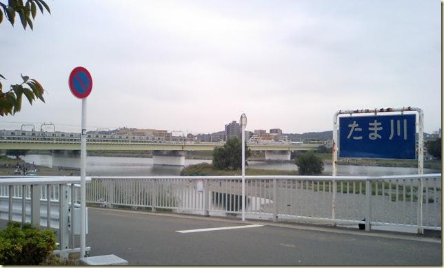 小田急線と多摩川
